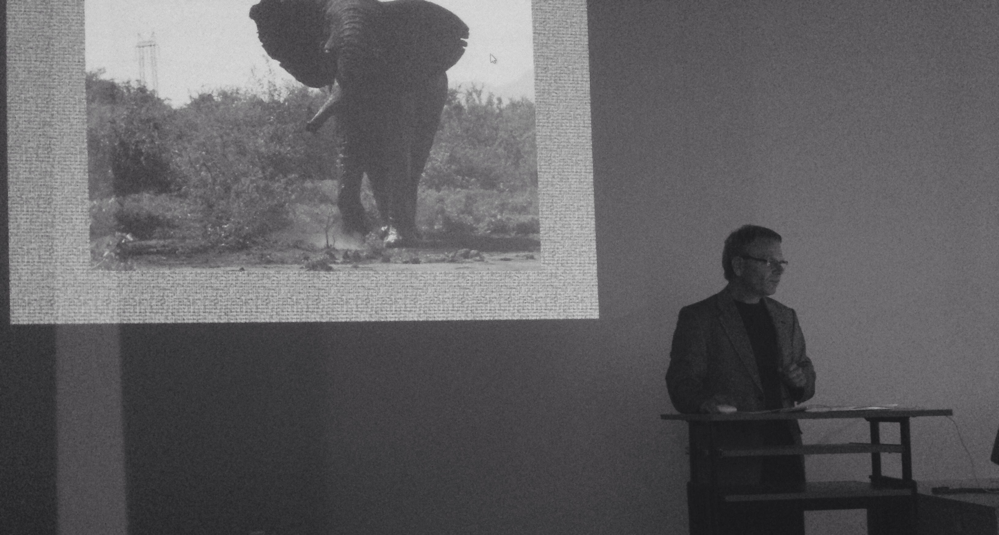 Dr. Tom Serfass discussing African Elephants, taken by Amelia Manasterli.