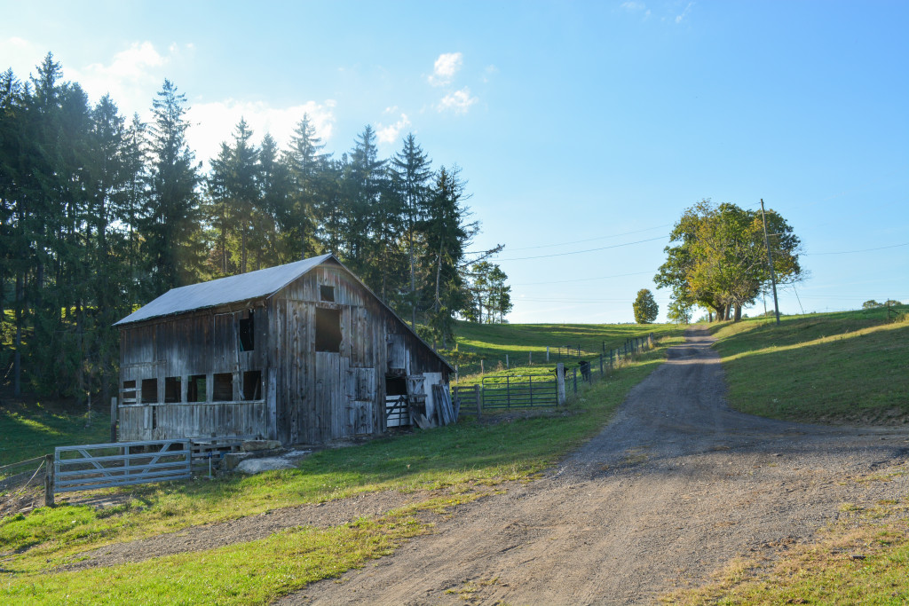 The traditional charm of family farms can be found throughout the Workman compound. (Nick DeMichele/TBL)