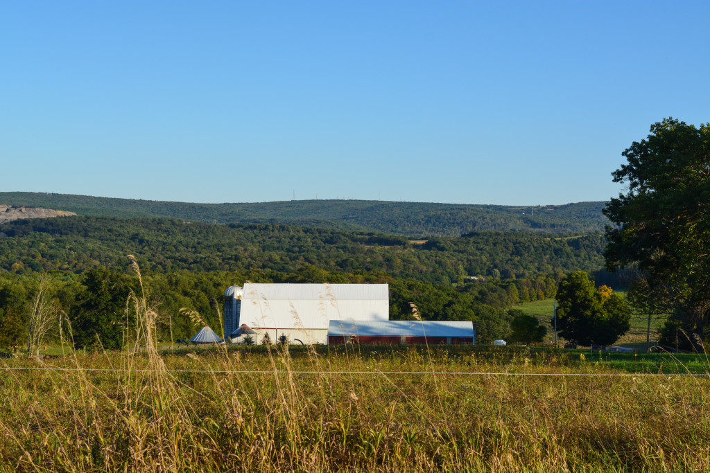 The Workman farm rises from the hills of Allegany County. (Nick DeMichele/TBL)