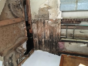 Allegedly. the roommates were told they could continue living in the home after the wall was torn down and mold was found. (Photo Credit: Jeff Franklin)