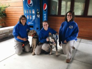 Claudia Weakland and her dog, Finn (left), Ann Frank and her dog, Bogan (middle), and Alyssa Vance (right).
