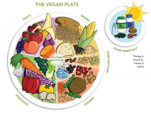 The Vegan Plate: a simple guide to a balanced Vegan lifestyle.