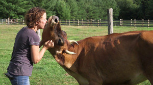 Brown kisses a cow at her sanctuary. Photo from: Jenny Brown.